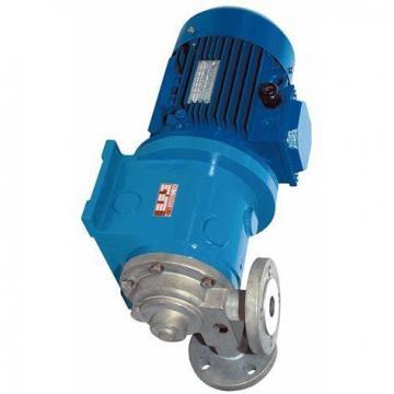 Reconditionné SUNDSTRAND L15-7009 Pompe Hydraulique L157009 Cw