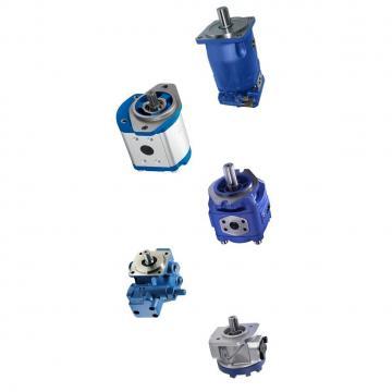 Pompe hydraulique électrique 220V Volts Electric Driven Hydraulic Pump 700BAR DE