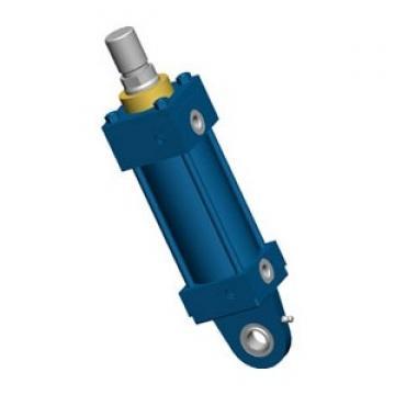 Rexroth 0822 353 001 Vérin Pneumatique Hub 25mm, Piston ⌀63mm , Tige de 20mm
