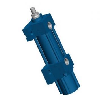 Rexroth 0822060000 Vérin de Guidage Kolbenstangenzylinder GPC-DA-012-0010-BV-SB