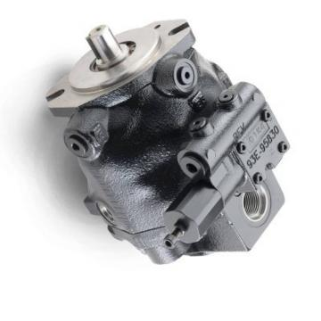 Neuf PARKER ICE7100-0103/TD1021965 Pompe Hydraulique ICE71000103TD1021965