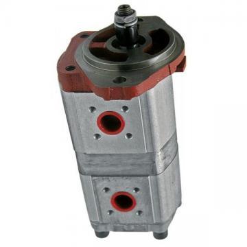 Nouveau Vai Steering pompe hydraulique V24-0601 Haut allemand Qualité