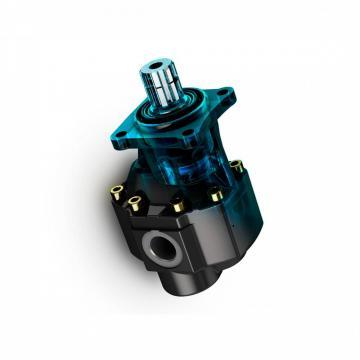 POMPE HYDRAULIQUE DOUBLE ETAGE POMPE A ENGRENAGES CNBA-15/3.0 18GPM 3000PSI