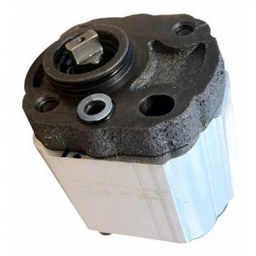 Kracht MD71-65 Pompe à Engrenage Hydraulique 10 CM ³/ U de Puisard fmvz1