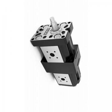 Kracht Pompe à Engrenage Pompe Hydraulique 4,5 CM ³/ U Pompe de Puisard fmvz2