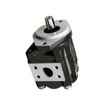 SKF EB56N2075-58 + Mmv Lubrification Pompe à Engrenage 2X2.115.105 Hydraulique