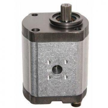 Bosch Engrenage Pompe Pompe Hydraulique 0510 325 018 Nov
