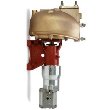 Rexroth hydraulic pump, No:  9510090001